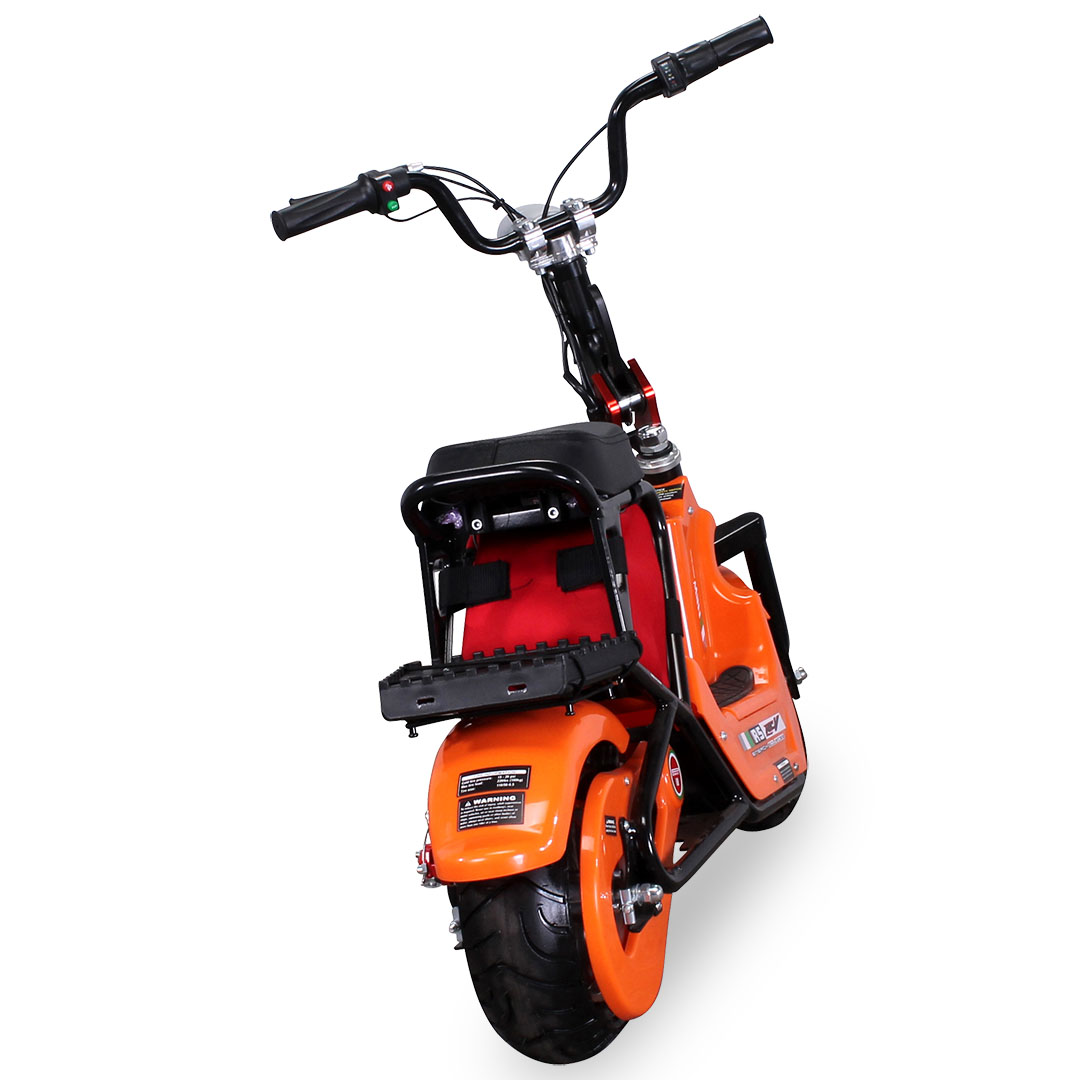 Electric Scooter Mini E- Bike SQ350DH