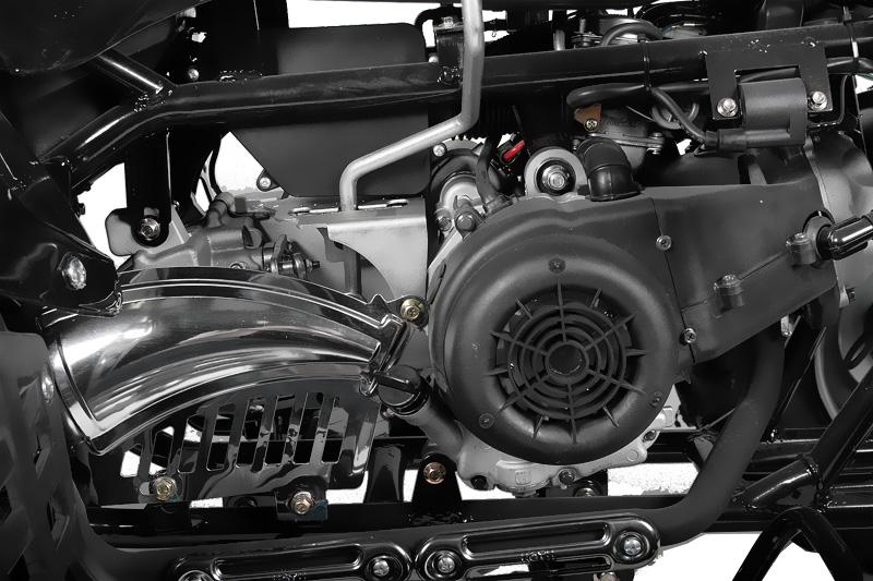 150cc AKP Raptor automatic