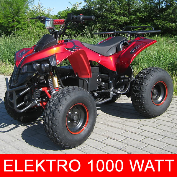 ECO RENEGADE 1000W 48V 8¨ 2 SPEED