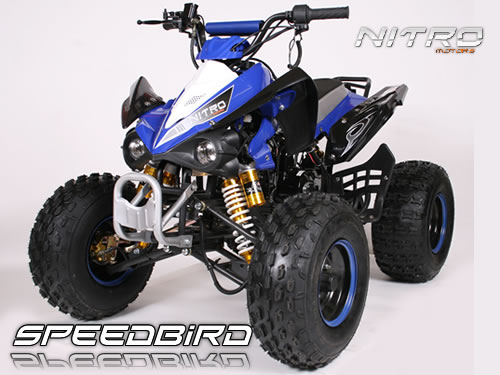 125cc SPEEDBIRD GXM 125 | MIDI QUAD